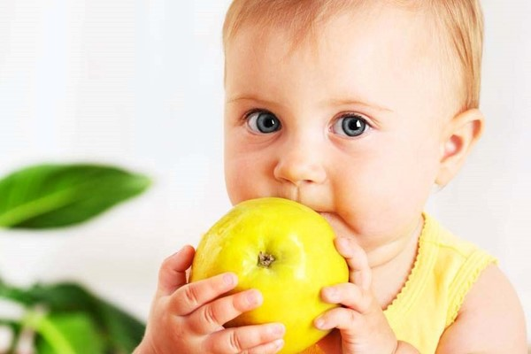 The Rapley method: enabling your baby to discover solid food